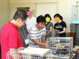 猫の譲渡希望の参加者にアドバイスをする老松さん。